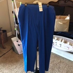 Women's Alfred Dunner Pull on Pants Size 16 NWT